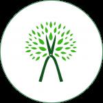 clip-icon